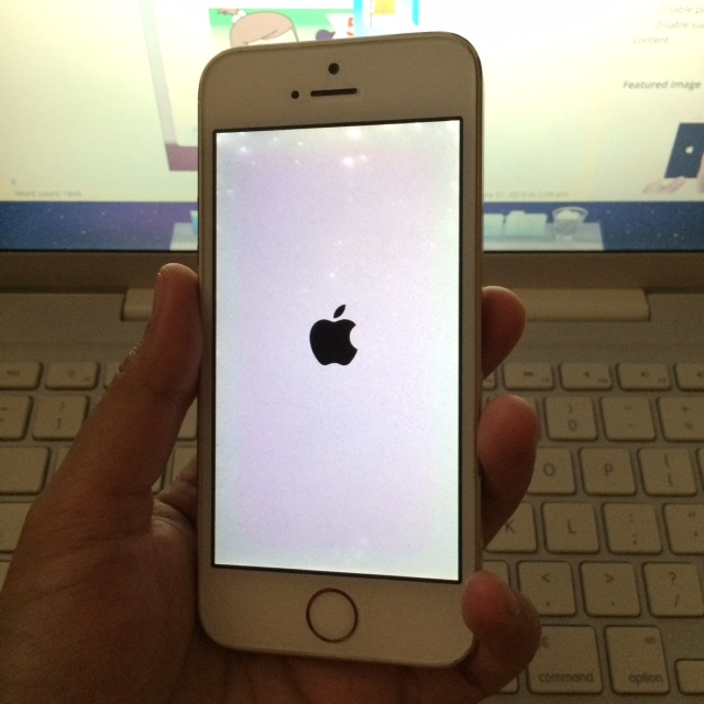 <pre>Cómo arreglar el iPhone / iPad &quot;sigue reiniciando&quot; al azar