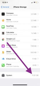 system storage on iPad or iPhone