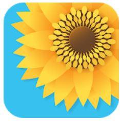 Parhaat sovellukset valokuvien järjestämiseen Androidilla