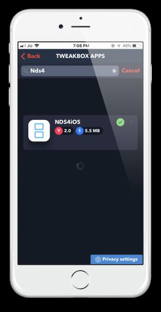 Come scaricare e installare NDS4iOS dall'applicazione TweakBox (2019) 3