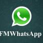 FMWhatsApp 8.05 APK Descarga la última versión