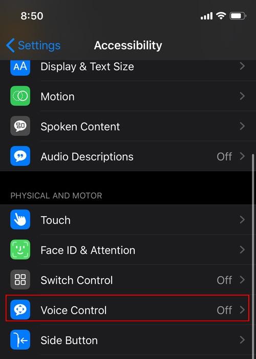 Habilitar control de voz Ios Voice Control