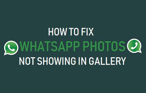 Arreglar fotos de WhatsApp que no se muestran en la galería