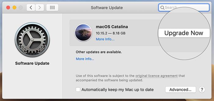 Actualiza el software en tu Mac
