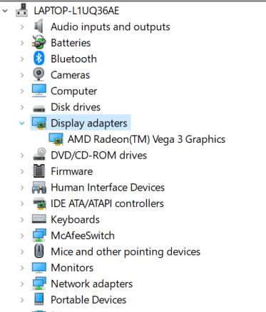 Identificación de la tarjeta de video Expandir adaptadores de pantalla