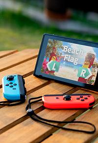 Nintendo Switch    cargo