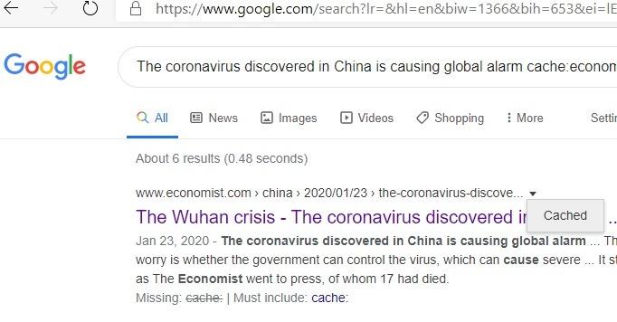 Página en caché del sitio específico de Google