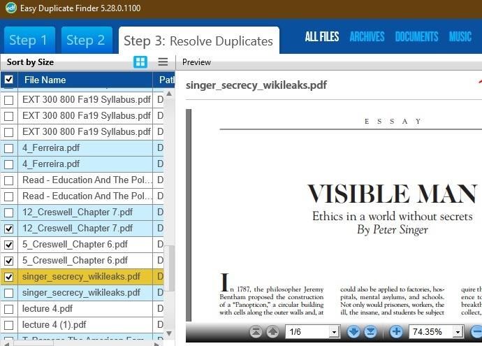 Eliminar archivos duplicados Windows Vista previa de archivos de Easy Duplicate Finder