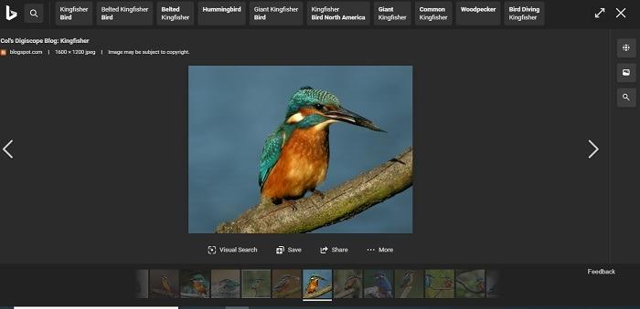 ¿Es Bing mejor que el desplazamiento horizontal de imágenes de Google con Bing?
