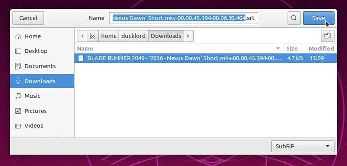Subtítulos de Autofix con Subsync Rename File
