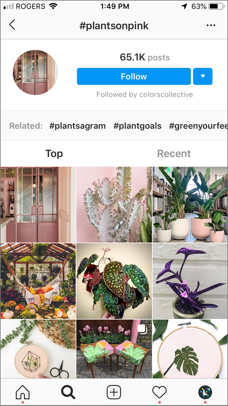 hacks de hashtag de instagram: siga los hashtags