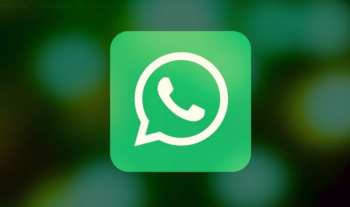 Hur man skickar ett GIF på WhatsApp 1