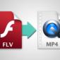 Convierte FLV a MP4 con el mejor convertidor