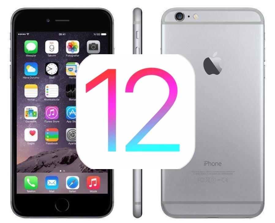 iOS 12.4.5 update