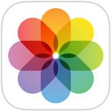 Fotos iOS icono