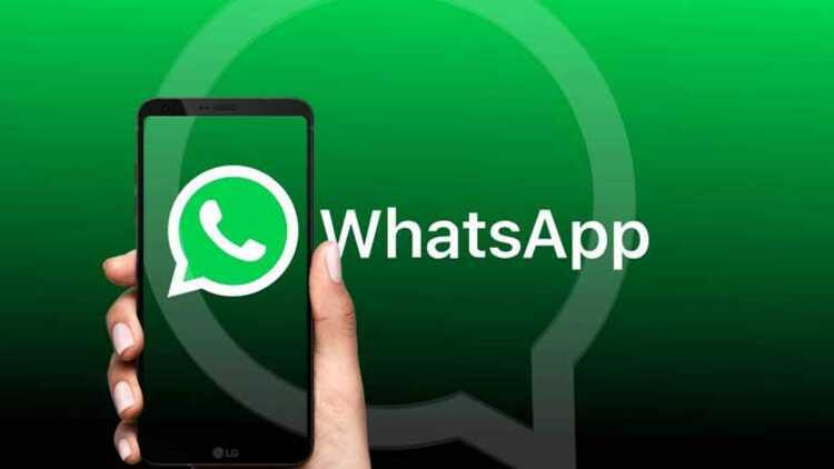 Bagaimana cara mengunduh WhatsApp gratis untuk seluler dan PC? ✅ ada 2 cara 2