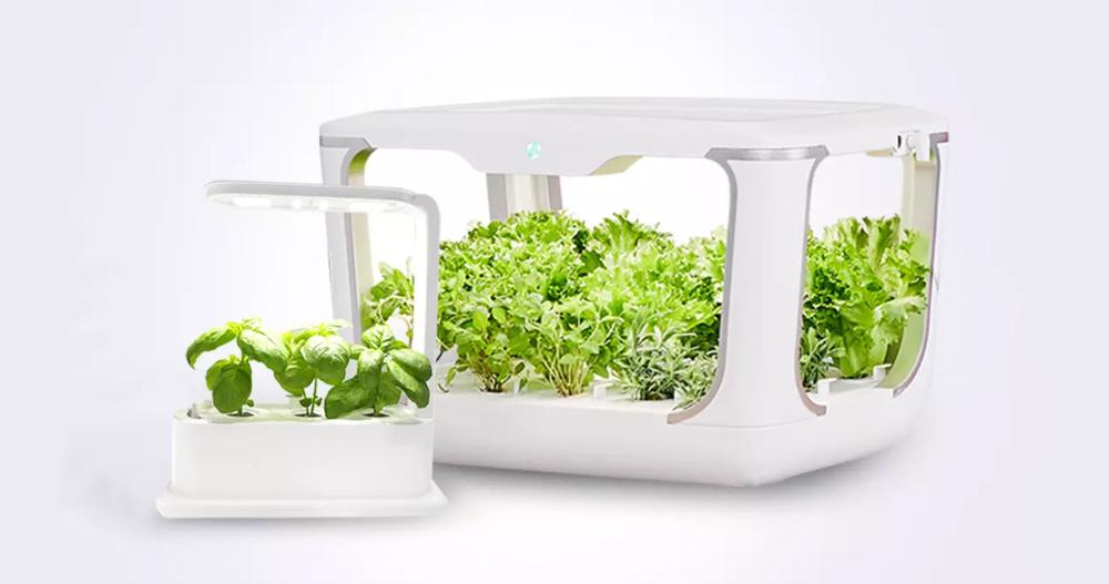 Kembangkan sayuran Anda sendiri tanpa meninggalkan rumah dengan rumah kaca baru yang disiapkan Xiaomi untuk dijual di Youpin