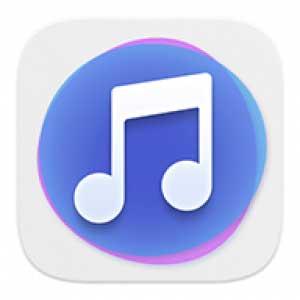 Télécharger le dernier APK Huawei Music 12.11.8.310 1