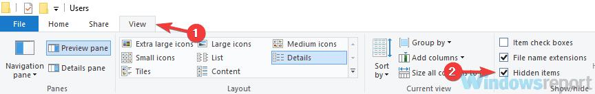 gizli dosya giriş sorunlarını göster windows