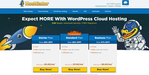 "WordPress Hosting Services ""width ="" 500 ""height ="" 253"
