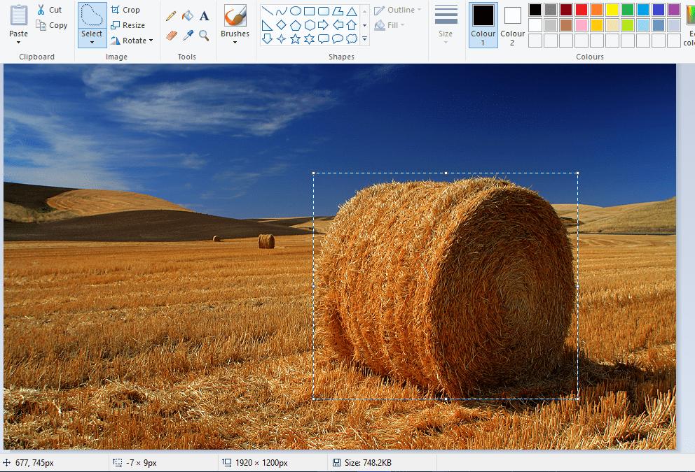 Создание прозрачного фона в Paint.NET