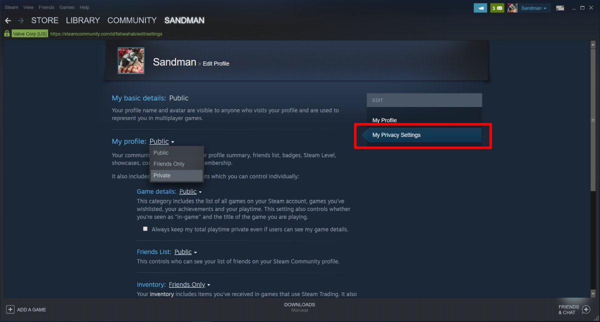 Cara menyembunyikan aktivitas Anda di Steam