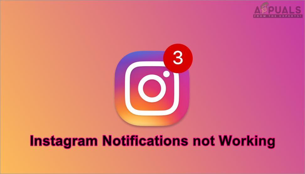 Bagaimana cara memperbaiki Instagram Notifikasi tidak berfungsi