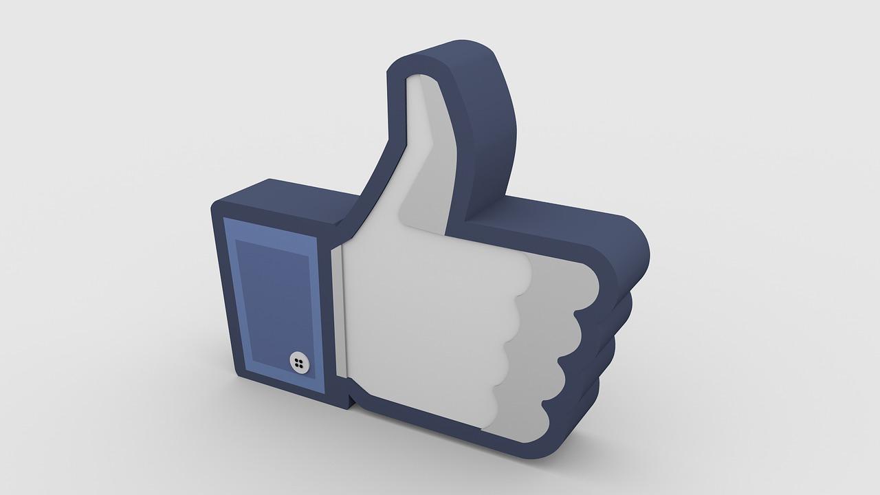 Suka Facebok