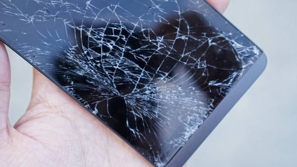 как извлечь фото из разбитого телефона растение конце
