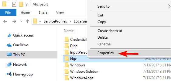 C: WindowsServiceProfilesLocalServiceAppDataLocalMicrosoftNgc