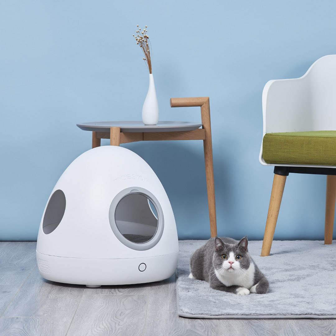 Xiaomi Akan Segera Meluncurkan Xiaomi Moestar Spaceship Smart Pet Nest Soon
