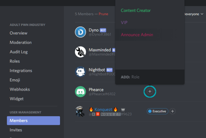 How to give administrator access to another user in Discord 3