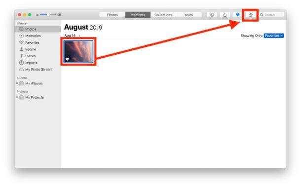 Cómo rotar imágenes en Fotos en Mac