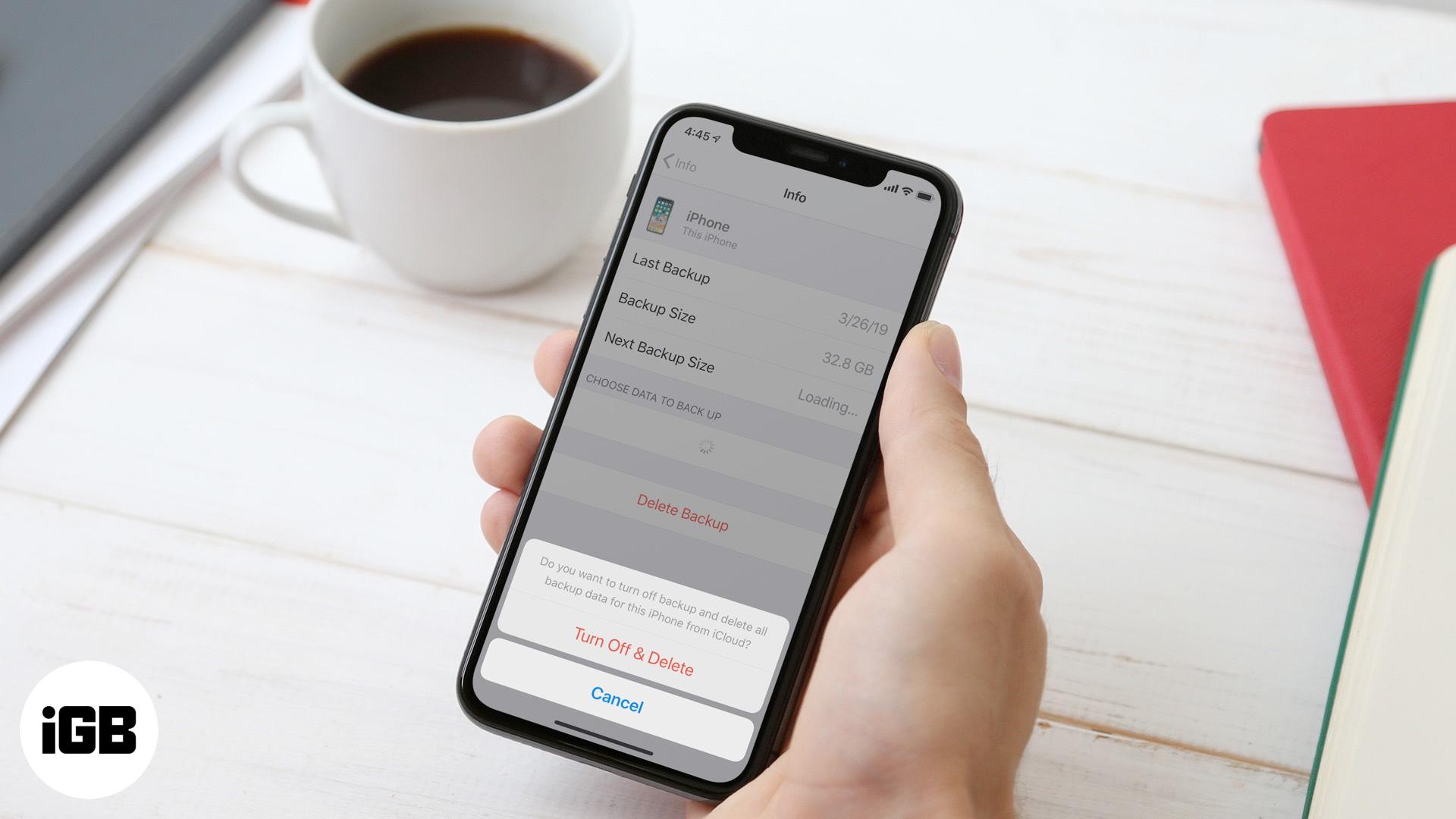 Cómo eliminar iCloud Backup para liberar almacenamiento