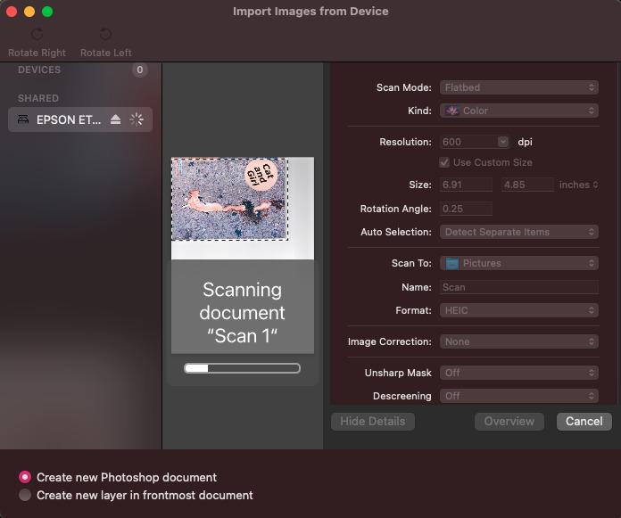 Puede importar fácilmente escaneos directamente desde programas como Photoshop