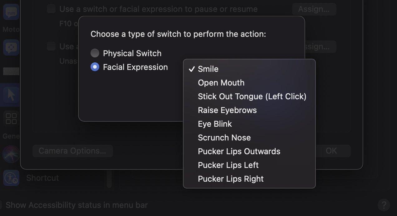 Hay una lista bastante extensa de expresiones faciales que Head Pointer puede detectar.